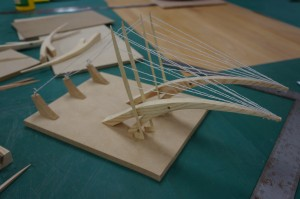 Second Year Structural Studies (13)