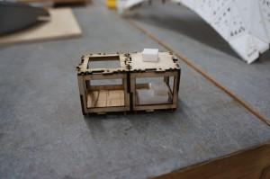 Alex final Project (4)